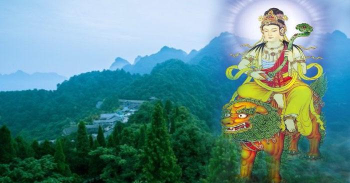 Thù Bồ Tát sa. mañjuśrī) là tên dịch theo âm, thường được gọi tắt là Văn-thù, dịch nghĩa là Diệu Đức (zh. 妙德), Diệu Cát Tường (zh. 妙吉祥), cũng có lúc được gọi là Diệu Âm (zh. 妙音), dịch từ tên tiếng Phạn là Mañjughoṣa, là một vị Bồ Tát tượng trưng cho trí huệ, một trong những vị Bồ Tát quan trọng của Phật giáo. Lần đầu tiên người ta nhắc đến Văn-thù trong tác phẩm Văn-thù-sư-lợi căn bản nghi quỹ (sa. ārya-mañjuśrī-mūlakalpa) ở thế kỉ thứ 4. Tranh tượng trình bày Văn-thù với lưỡi kiếm và kinh Bát-nhã-ba-la-mật-đa, được vẽ khoảng ngang đầu. Người ta xem đó là biểu tượng trí huệ phá đêm tối của Vô minh. Về sau chúng ta thường thấy Văn-thù cưỡi trên một con sư tử.